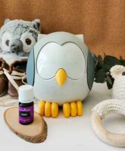 Feather Owl Diffuser